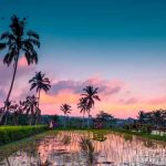 Travel Bali on a Budget