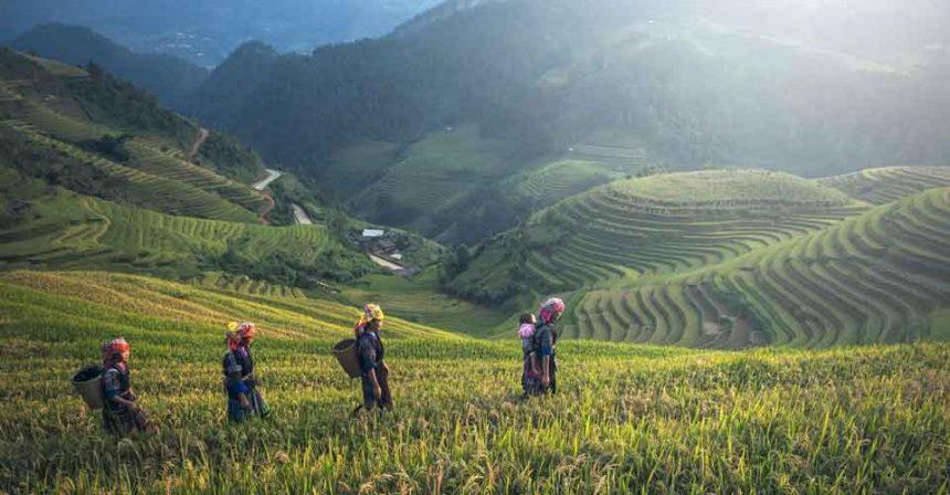 Ametis Villa Bali Canggu –Review and Details